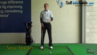 Steve Stricker Golf Pro - Video - by Pete Styles