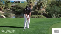 Basic Locked In Chipping Stance by Tom Stickney