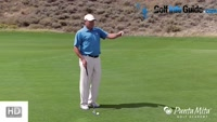 Chip Short And Roll It Up Onto The Green By Tom Stickney