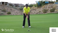 Low To The Ground Fairway Wood Takeaway by Tom Stickney