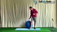 Lying Rotations For Core Flexibility and Strength Video - by Peter Finch