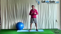 Planked Leg Raise For Core Stability Video - by Peter Finch
