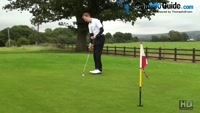 Should I Watch The Golf Ball All The Way Into The Hole Video - by Pete Styles