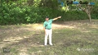 Under Trees Punch Shot - Video Lesson by Tom Stickney Top 100 Teacher