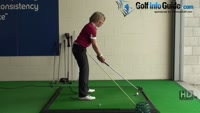 What Is the Difference between a One Plane Golf Swing and a Two Plane Golf Swing? Video - by Natalie Adams