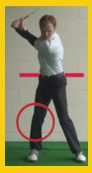 back legs key to a powerful swing 2