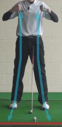back dual shoulder strap