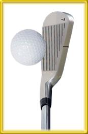 Golf iron Blade Top View