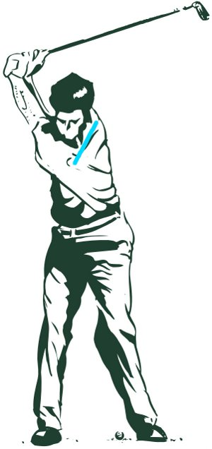 Golf Backswing Shoulders