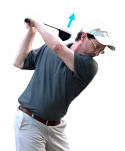Dustin Johnson Swing