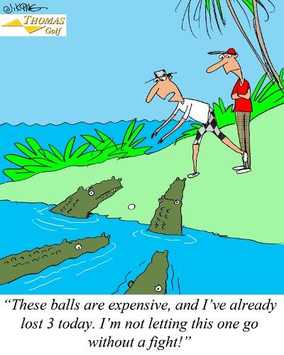 Golf Ball Fight Joke