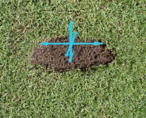 know your swing divot