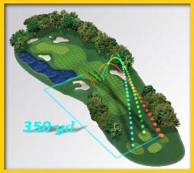 Carry Golf Term