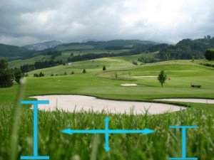 Rough Golf Term