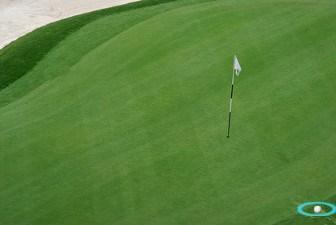 Bermuda Grass, Golf Term
