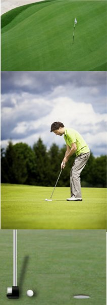 Golf Rule 16, The Putting Green