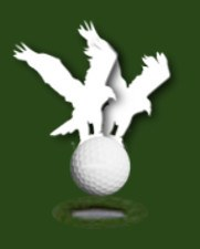 Albatross, Golf Term