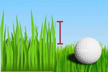 Apron, Golf Term