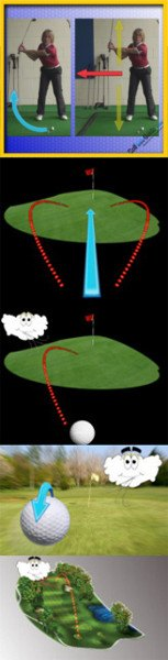 The Role of the Golf Ball