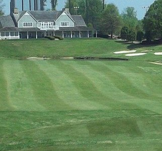Sedgefield Country Club Course Review