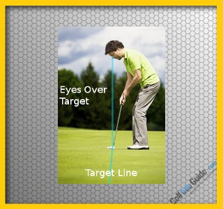 Align Eyes Over the Golf Ball to Straighten Out Putts Video