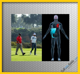 Walk the Golf Course for Added Health Benefits