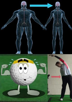Muscles Golf Lesson Chart
